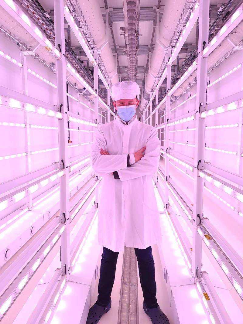 【新闻图片】应用飞利浦LED生长灯本地生产、周年供应新鲜沙拉生菜-2.jpg