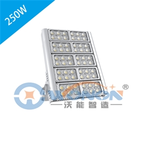 250W模组投光灯 Modular Floodlight