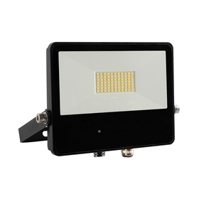 Motion-activated flood light