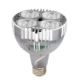 PAR20-2 LED光源