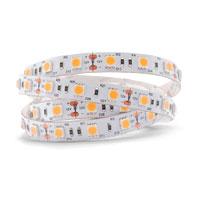 led户外灯带 商业照明30珠灯条 5050软灯带