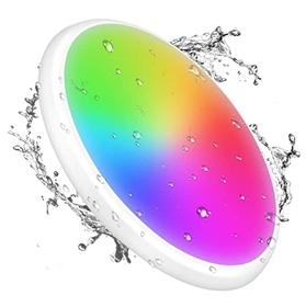 IP65 防水 智能吸顶灯 嵌入式安装 兼容 Alexa