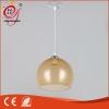 现代简约亚克力吊灯200mm灯罩餐厅吧台水果店小吃店吊灯灯具