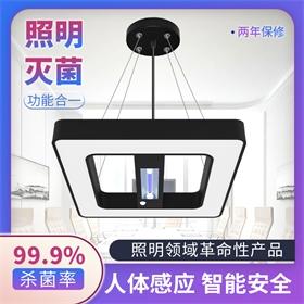 商用紫外线+臭氧遥控延时人体感应杀菌灭菌照明灯