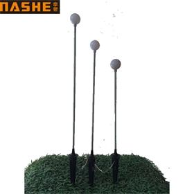 厂家直销亚克力圆球地插灯 塑料圆球芦苇灯 公园景区亮化景观灯