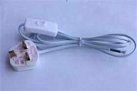 BS认证插头认证303开关两芯扁线
