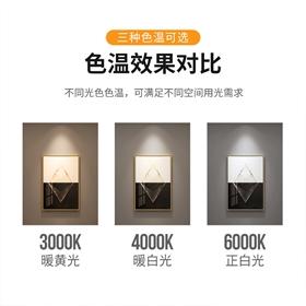 甘宇照明防眩射灯洗墙灯智能调光调色高性价比射灯米家直连语音控
