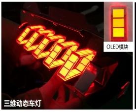 三维动态车灯-OLED模块