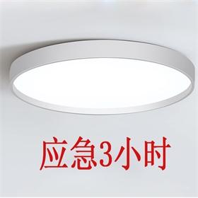 CE 16W 24W 应急吸顶灯