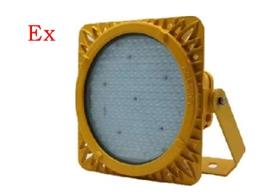 LED防爆泛光灯 DZD8117