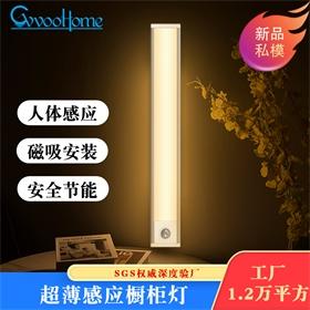 led小夜灯 人体感应橱柜灯 超薄光感走廊灯 USB充电款