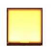 OLED光源-M004(55mm*53mm)