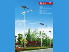 太阳能路灯TYNLD-006